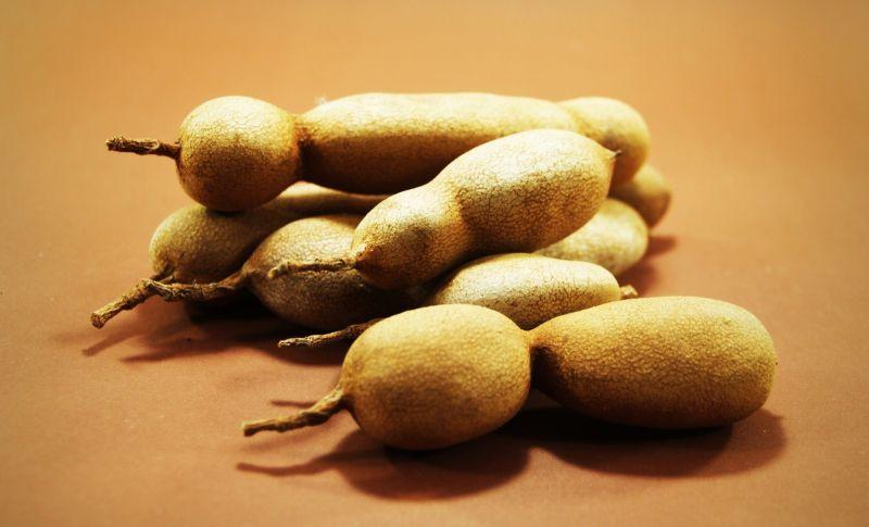 Tamarindo Características, cultivo, propiedades, poda, fruto Árbol