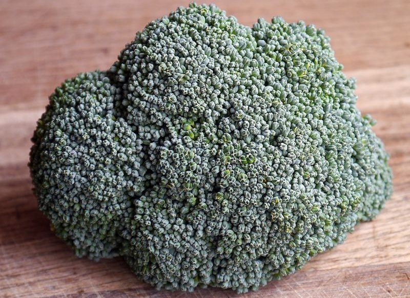 Brócoli Características, valor nutricional, propiedades, cultivo Planta