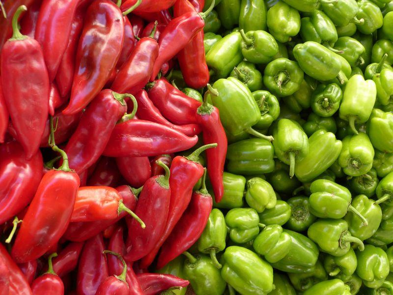 Pimiento Características, cultivo, propiedades, variedades Planta