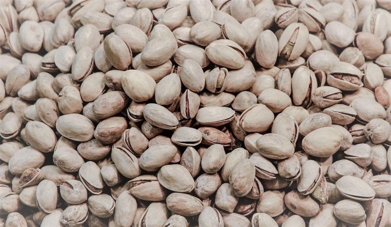 Pistacho Hábitat, reproducción, beneficios, variedades Árbol, fruto
