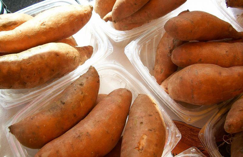 Batata Características, cultivo, beneficios y propiedades medicinales