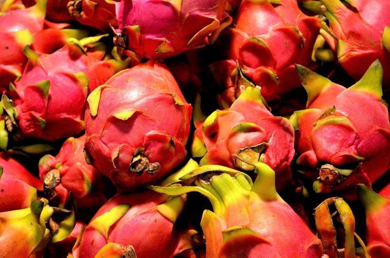 Pitahaya Características, propiedades, beneficios Fruta del dragón