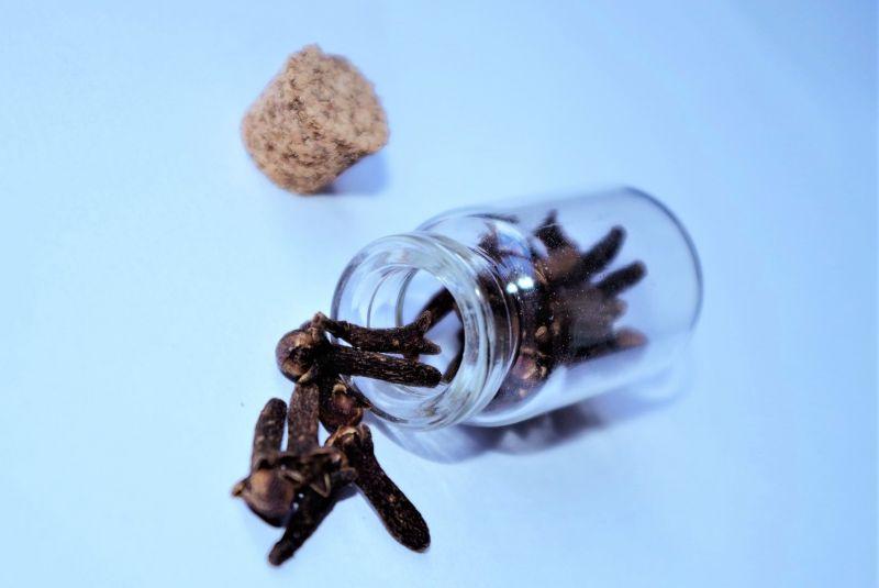 Clavo de olor Origen, características, beneficios y propiedades Clavero