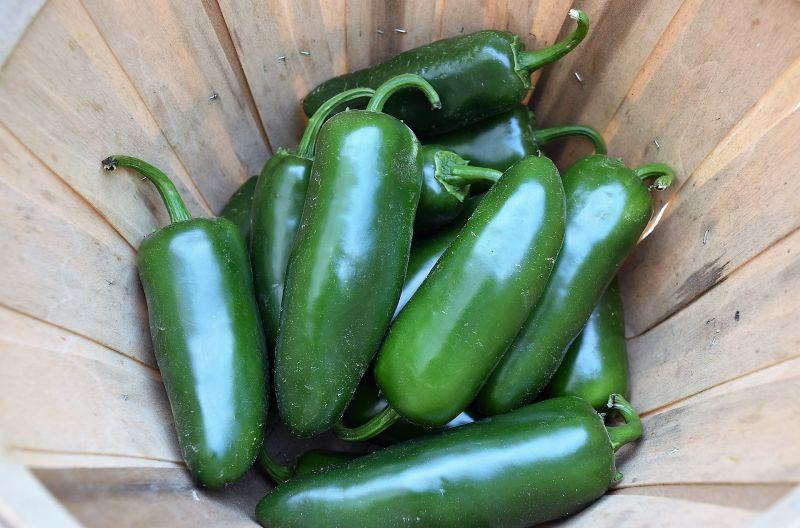 El chile jalapeño
