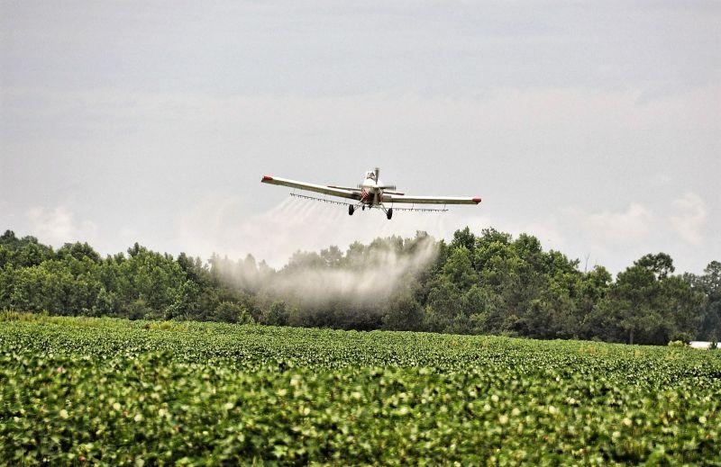 El herbicida